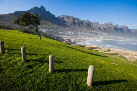 windblown: Camps Bay and hillside, Cape Town, South Africa