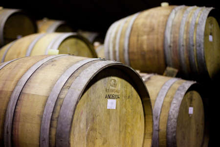 Barrels of South African wine in a wine cellar