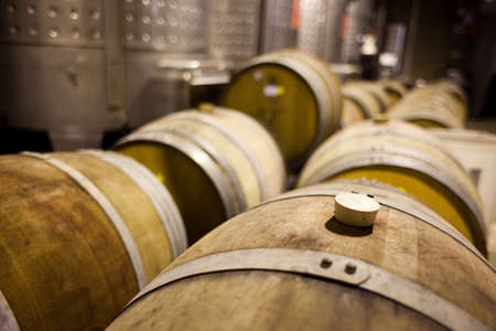 Barrels of South African wine in a wine cellar Stock Photo - 13567100
