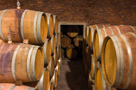Barrels of South African wine in a wine cellar Stock Photo