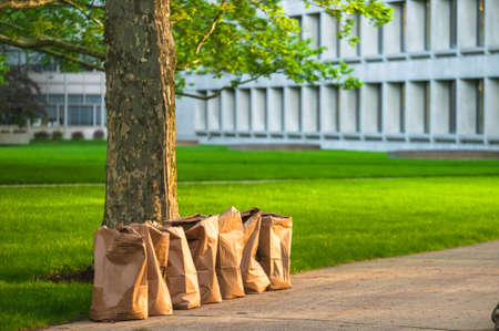 tool bag: Row of recycling yard waste paper bags