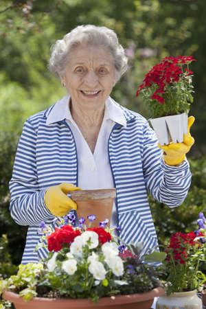 Een lachende senior vrouw staat voor een tabel met ingemaakte bloemen op een tafel.  Ze houdt een starter plant die ze klaar om pot. Verticaal schot.