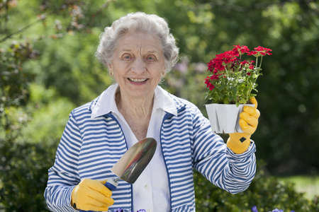 A smiling senior woman is standing with a trowel and holding a starter plant she is getting ready to plant. Horizontal shot. Stock Photo