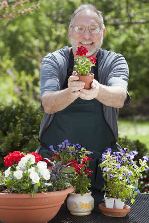 Man smiles at the camera while gardening with potted plants outdoors. photo