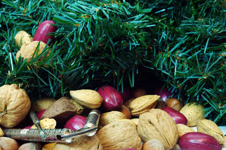 Christmas mixed nuts containing walnuts, pecans, brazil nuts, filbert, hazelnuts