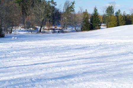 A cross country skier in Harrison Park in Owen Sound  photo