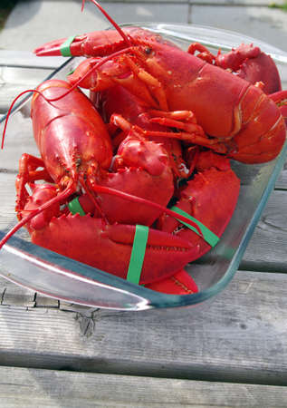 Lobster freshly cooked ready to eat  photo