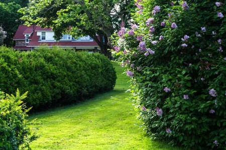 Ceder Hedge en steen Cottage