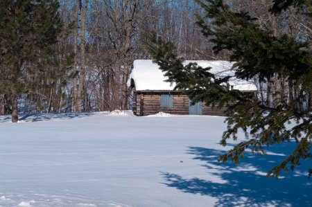 log cabin in snow: Cabin in hte Spruce trees in the winter Stock Photo