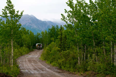 covered wagon: Covered Wagon in Mt woods on the boundry of Denali National Park