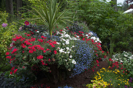 plants and trees: Glacier Gardens in Juneau Alaska Stock Photo