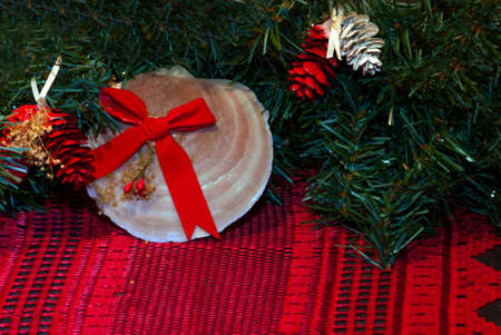 chritmas: Seashell and leaves as Chritmas Decorations with pinecones Stock Photo