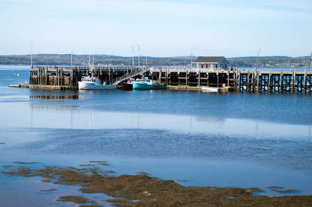 St Andrews Fishing Wharf at low tide