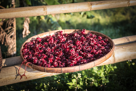 Roselle is sun-dried to preserve food.