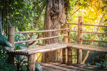 Bamboo chair in the forest Built for travelers who come to the forest.