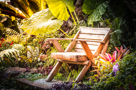 Beautiful flowers and wood chair in the garden, background photos, nature photos