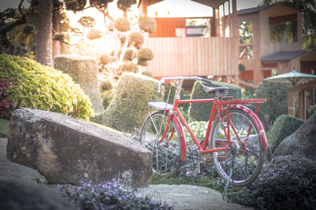 Ancient red bicycle parked in the garden, background image, garden photos