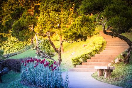 The way to walk in the garden., background photos, nature photos