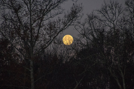 Early morning moon setting