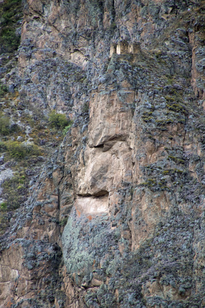 Face Rock Formation in the Andes Mountains