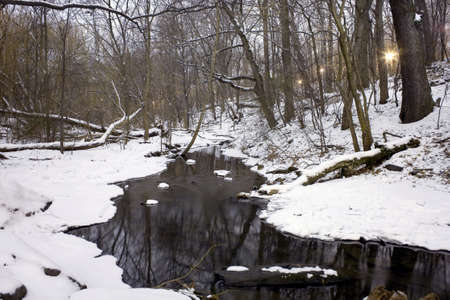 North Woods section of Central Park during a winter evening.  Photographed December, 2008 in New York, USA. photo