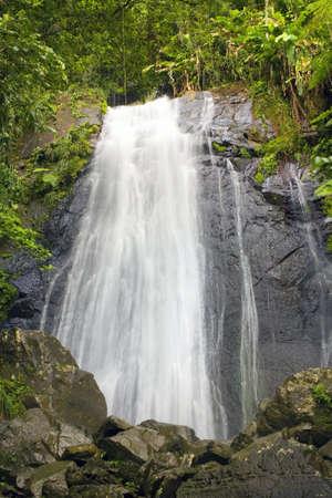 La Coca Falls El Yunque Puerto Rico photo