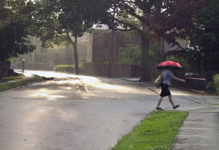 bronx county: Street scene with lady walking in the rain with umbrella.   Photo location is Fieldston Road in the County of the Bronx, New York, USA.  Taken summer, 2006