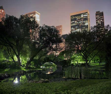 central: foto de Central Park en una noche brumosa neblina en Nueva York. tomadas en el estanque cerca de la calle 59 y avenida Col�n. Foto de archivo