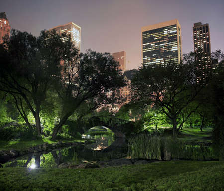 photo of Central Park on a misty foggy night in New York City.   taken at the pond near 59th street and Columbus avenue.    Stock Photo
