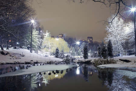 winter evening: Photo of Central Park in New York City at night.   Stock Photo