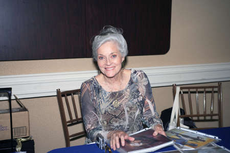 catwoman: CHERRY HILL, NJ - JULY 13: Lee Ann Meriwether shown at the Super Mega Show and Comic Fest.  Taken July 13, 2008 in Cherry Hill, NJ.