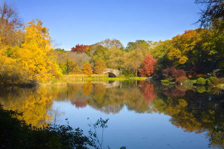 Central Park during the Fall or Autumn season in New York City.