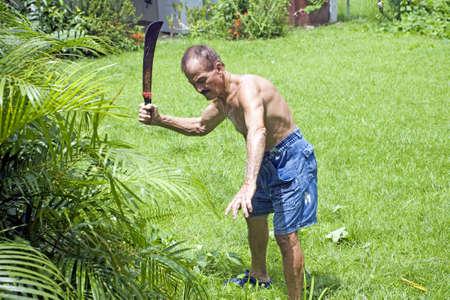 puerto rican: An active latino senior man uses a machete to clear field. His ethnicity is Puerto Rican.