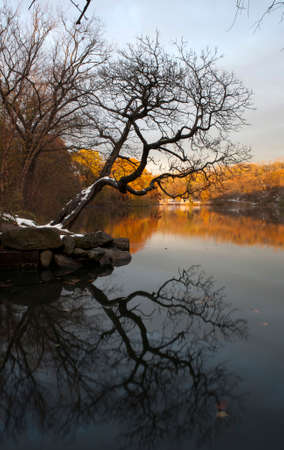 bronx county: Van Cortlandt park at daylight in the County of the Bronx, New York.