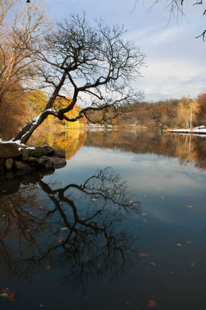 bronx county: Van Cortlandt park in the County of the Bronx in winter. Stock Photo