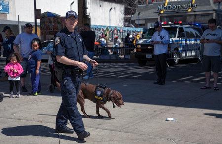 BRONX, NEW YORK, USA - APRIL 10:  NYPD Counter-terrorism Bureau K-9 officer and dog during opening day at Yankee Stadium.  Taken April 10, 2017 in New York. Redakční