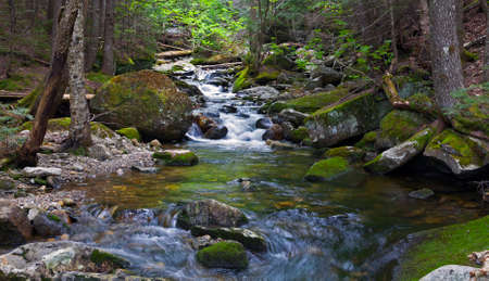 River Sream at  Mount Washinton  via Ammonoosuc ravine trail in Coos County, New Hampshire.