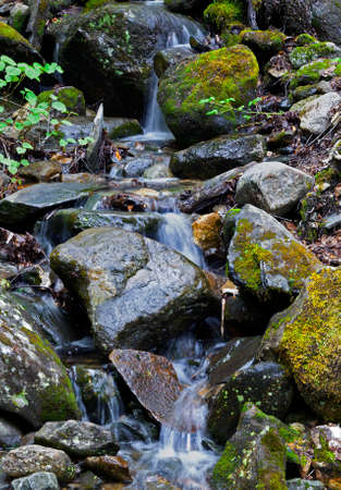 Waterfall  at  Mount Washinton  via Ammonoosuc ravine trail in Coos County, New Hampshire.