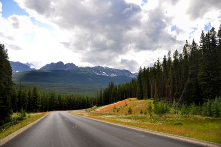 view of Banff national park along the Bow Valley parkway Stock Photo - 10869800