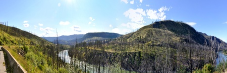 panoramic view of British Columbia wilderness along the Yellowhead Highway with trees, mountains and river