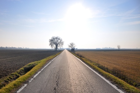 straight road in italian Po valley running among cultivated fields Stock Photo - 12442702