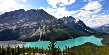 northwest:  Peyto Lake in Rocky Mountains Canada Stock Photo
