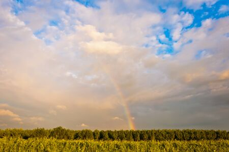 Rainbow in Po Valley, Italy Stock Photo - 13854175