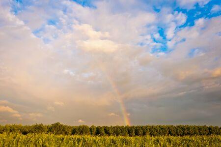 Rainbow in Po Valley, Italy Stock Photo - 13854175