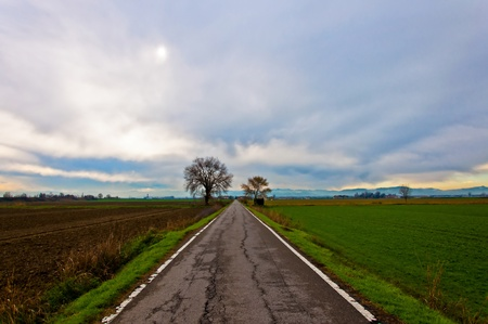 straight road in italian Po valley running among cultivated fields in winter Stock Photo - 17382053