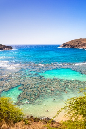 Snorkeling paradise Hanauma bay, Oahu, Hawaii  photo