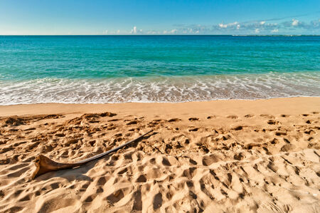 tropical exotic secluded Haena beach in Kauai island, Hawaii