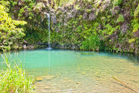 Spring fed pool on the road to Hana in Maui, Hawaii photo