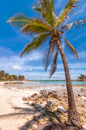 mujeres: Isla Mujeres, Mexico - April 22, 2014: day view of beach with palm and tropical sea in Isla Mujeres, Mexico. The island is located 8 miles northeast of Canc?n in the Caribbean Sea.