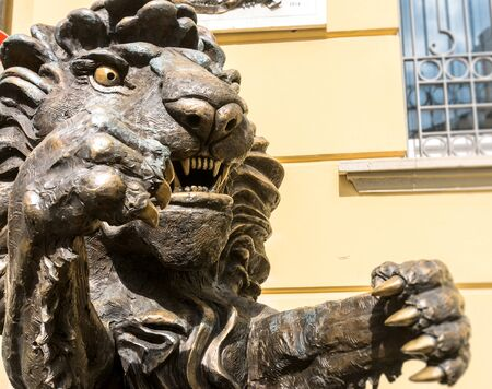 potenza: POTENZA, ITALY - MARCH 13, 2015: detail of lion statue in front of Municipality building in Potenza, Italy. The Lion is the symbol of Potenza, the highest regional capital city in Italy. Editorial